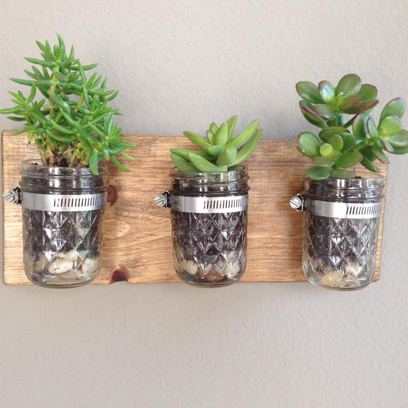 Mason jar wall succulent garden